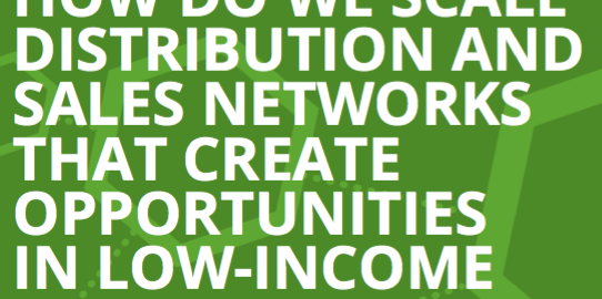 Inclusive Distribution & Sales Networks