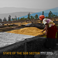 State Of The SGB Sector 2013